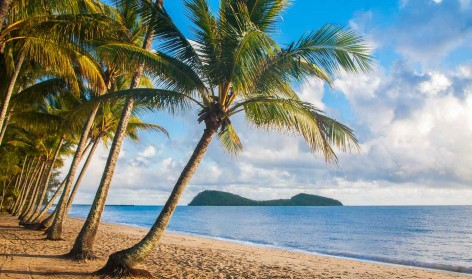 TIPP: Palm Cove ist bekannt für tolle Kayaktouren um Double Island!