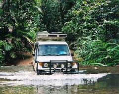 Rainforest and Wildlife 4WD Eco Safari
