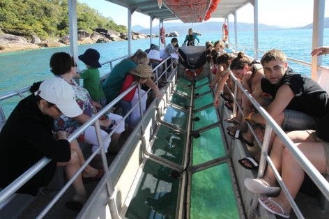 Fitzroy Island Glas Bottom Boat Tour