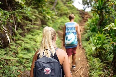 Wir wandern! Wir wandern im Fitzroy Island Nationalpark!
