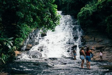 Daintree Nationalpark - Es erwarten dich jede Menge Wasserfälle