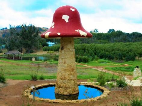 """Der große Pilz wird auch """"The Big Magic Mushroom"""" genannt"""