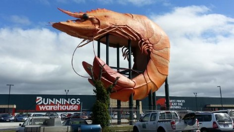 Die Giganten Australiens: The Big Prawn