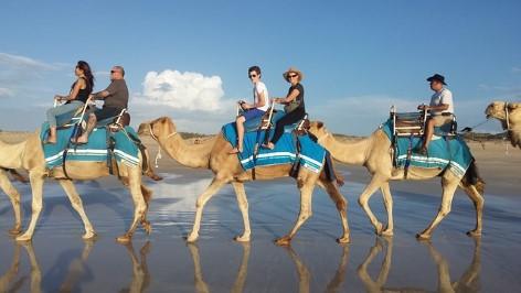 Kamelreiten an den riesigen Sanddünen Australiens